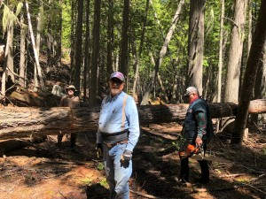 Delmar, Keith, & Merrill - our chain-saw crew!
