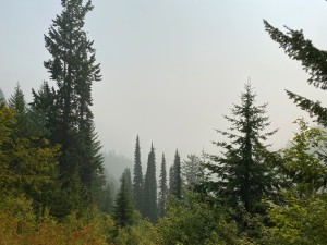 You can normally see the Idaho mountains from Pass Creek Pass, but the Oregon wildfire smoke had drifted in today.