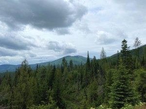 View of Calispell Peak