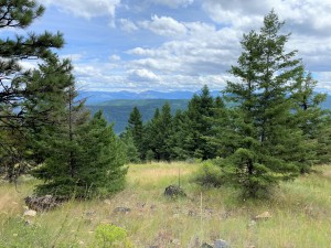 This route requires a USFS permit - there are great views at the old USAF radar dome site!