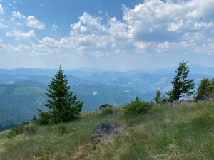 View west of Bonaparte Mt from the side of Bodie Mt, about halfway up the mountain.