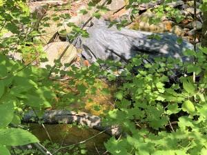 Tonata Creek