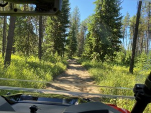 There are various access roads open to larger vehicles in the LPO's OHV area, but all trails are limited to dirt bikes and/or ATVs.